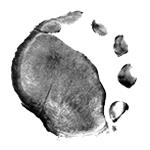 circulo-olaiobranco